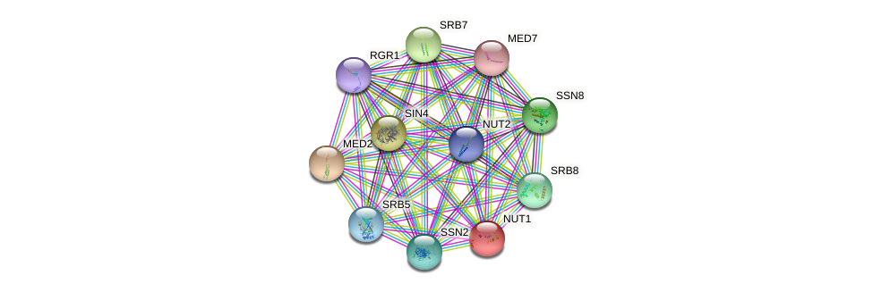NUT1 protein (Saccharomyces cerevisiae) - STRING interaction network