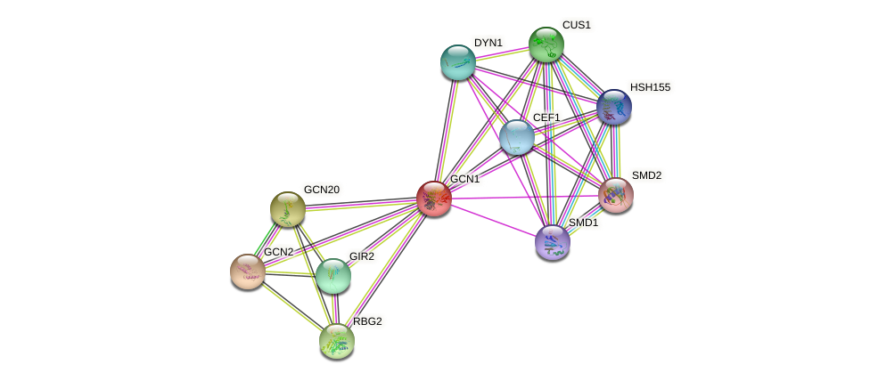 GCN1 protein (Saccharomyces cerevisiae) - STRING interaction network
