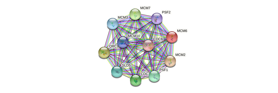 MCM6 protein (Saccharomyces cerevisiae) - STRING interaction network