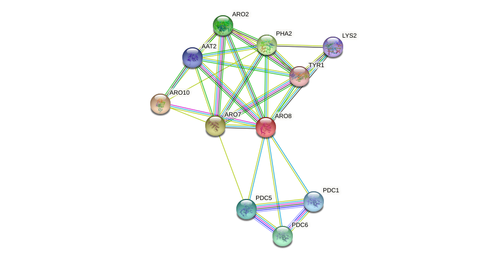 ARO8 protein (Saccharomyces cerevisiae) - STRING interaction network
