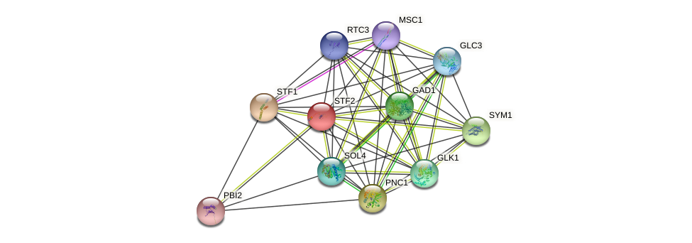 STF2 protein (Saccharomyces cerevisiae) - STRING interaction network