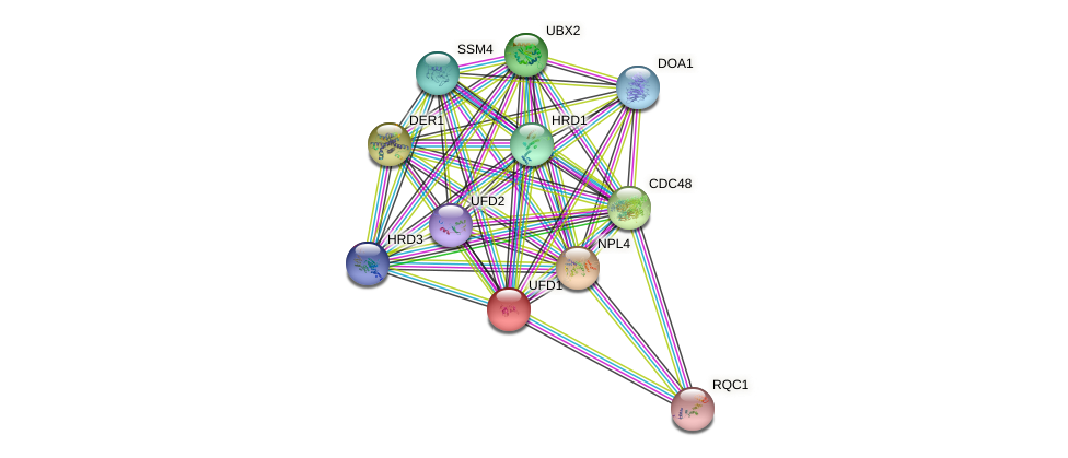 UFD1 protein (Saccharomyces cerevisiae) - STRING interaction network