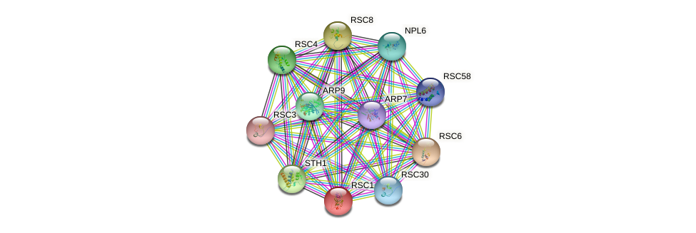RSC1 protein (Saccharomyces cerevisiae) - STRING interaction network
