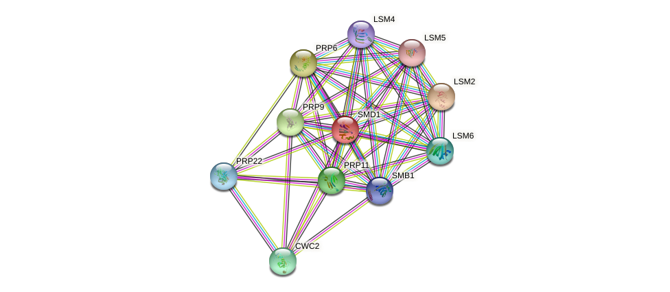 SMD1 protein (Saccharomyces cerevisiae) - STRING interaction network