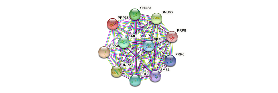 PRP38 protein (Saccharomyces cerevisiae) - STRING interaction network