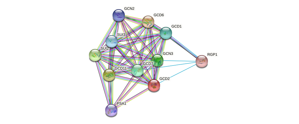 GCD2 protein (Saccharomyces cerevisiae) - STRING interaction network