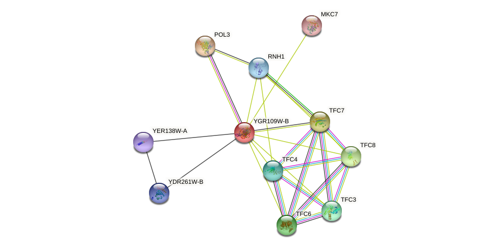 YGR109W-B protein (Saccharomyces cerevisiae) - STRING interaction network