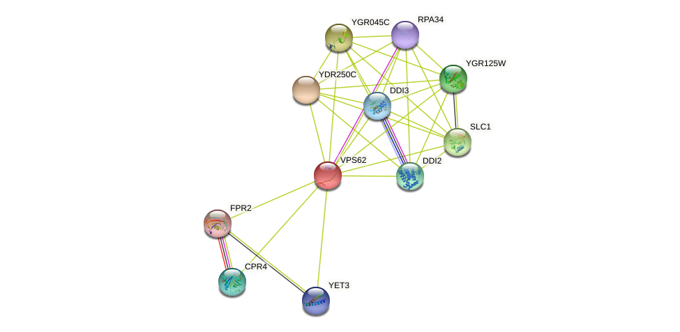 VPS62 protein (Saccharomyces cerevisiae) - STRING interaction network