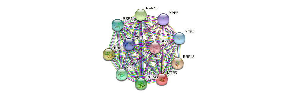 MTR3 protein (Saccharomyces cerevisiae) - STRING interaction network