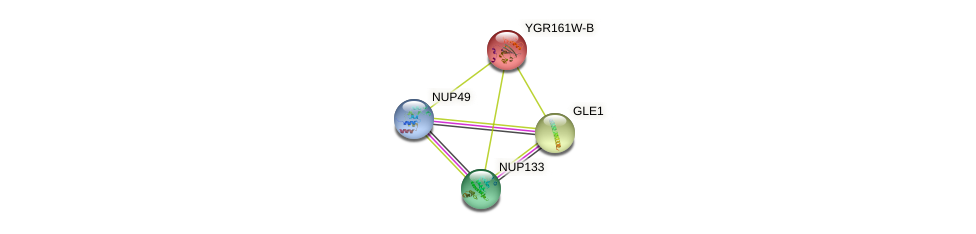 YGR161W-B protein (Saccharomyces cerevisiae) - STRING interaction network