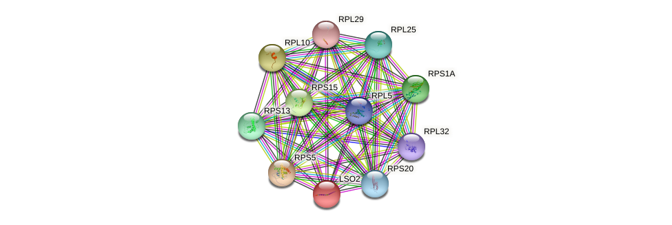 LSO2 protein (Saccharomyces cerevisiae) - STRING interaction network