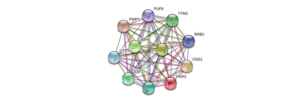 HGH1 protein (Saccharomyces cerevisiae) - STRING interaction network