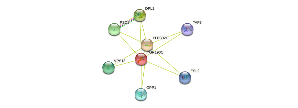 YGR190C protein (Saccharomyces cerevisiae) - STRING interaction network