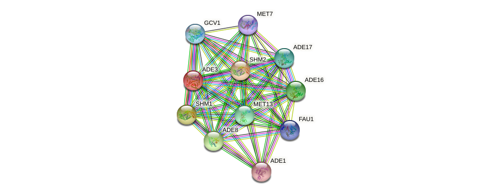 ADE3 protein (Saccharomyces cerevisiae) - STRING interaction network