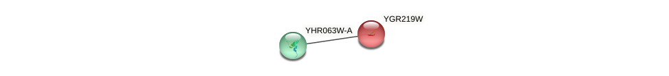 YGR219W protein (Saccharomyces cerevisiae) - STRING interaction network