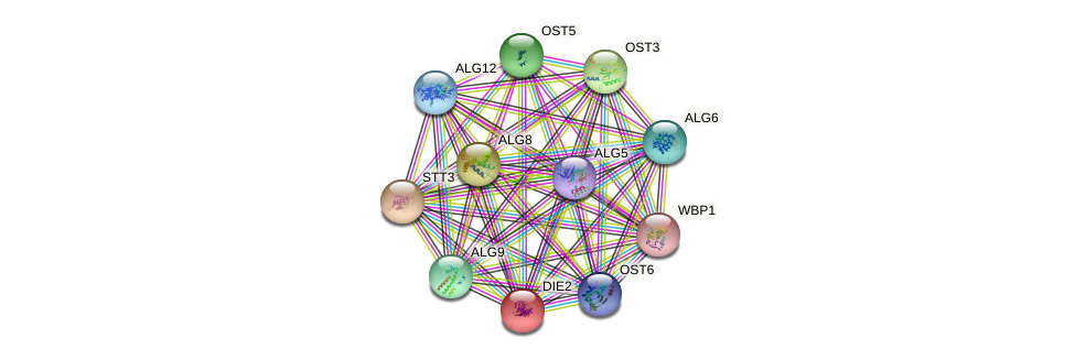 DIE2 protein (Saccharomyces cerevisiae) - STRING interaction network