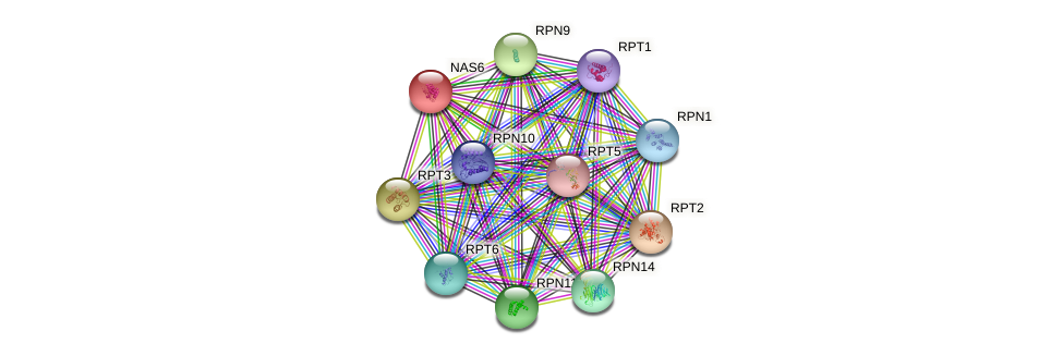 NAS6 protein (Saccharomyces cerevisiae) - STRING interaction network
