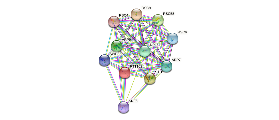 RTT102 protein (Saccharomyces cerevisiae) - STRING interaction network