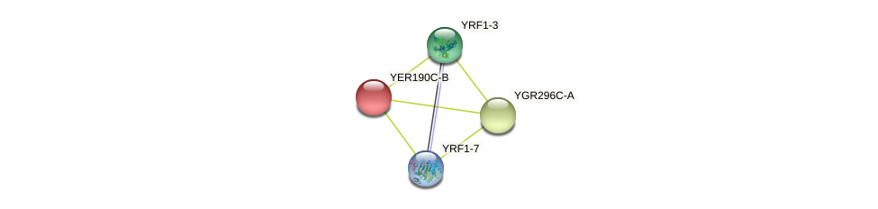 YER190C-B protein (Saccharomyces cerevisiae) - STRING interaction network