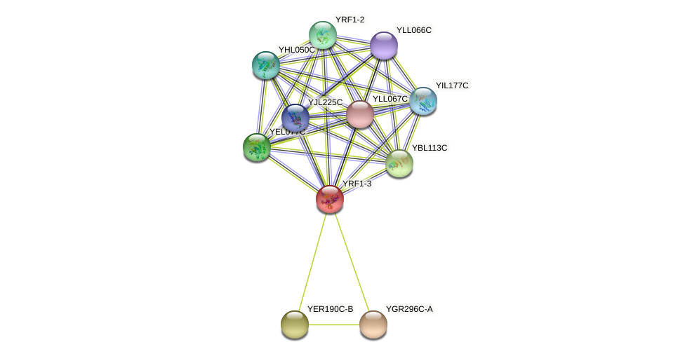 YRF1-3 protein (Saccharomyces cerevisiae) - STRING interaction network