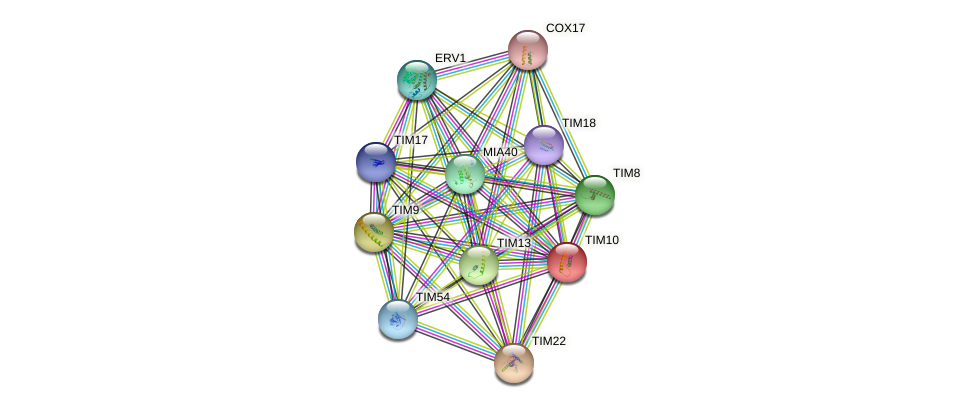TIM10 protein (Saccharomyces cerevisiae) - STRING interaction network