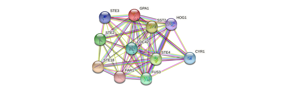 GPA1 protein (Saccharomyces cerevisiae) - STRING interaction network
