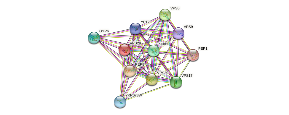 VPS29 protein (Saccharomyces cerevisiae) - STRING interaction network