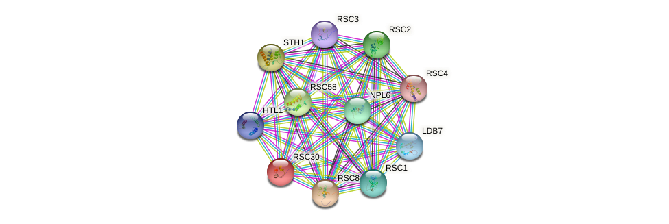 RSC30 protein (Saccharomyces cerevisiae) - STRING interaction network