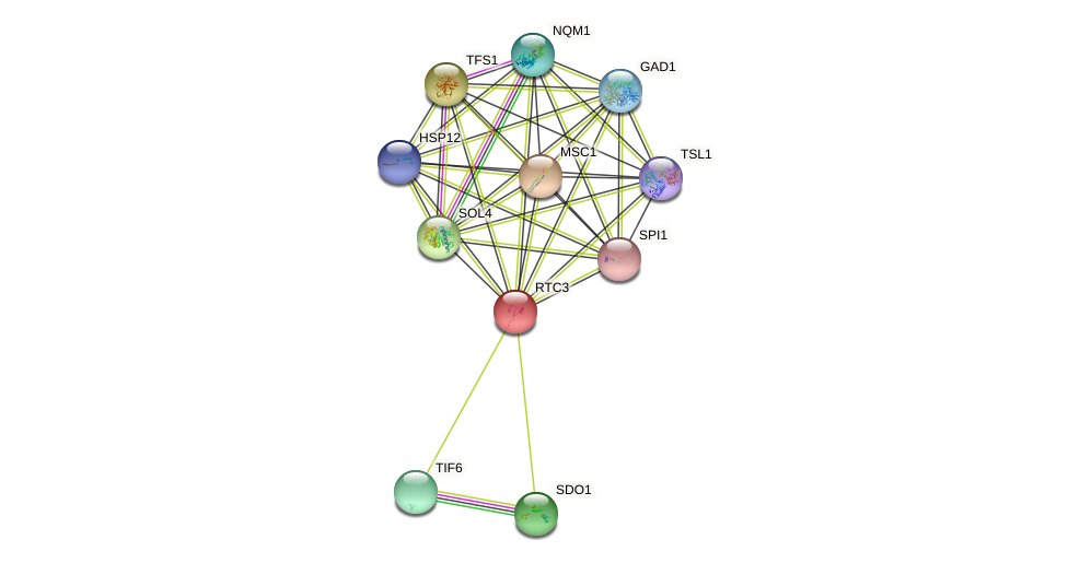 RTC3 protein (Saccharomyces cerevisiae) - STRING interaction network