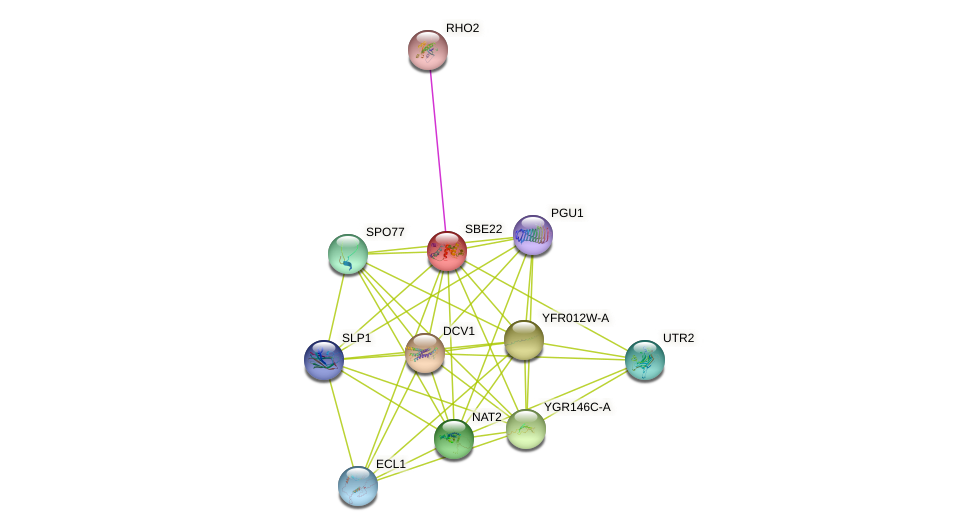 SBE22 protein (Saccharomyces cerevisiae) - STRING interaction network