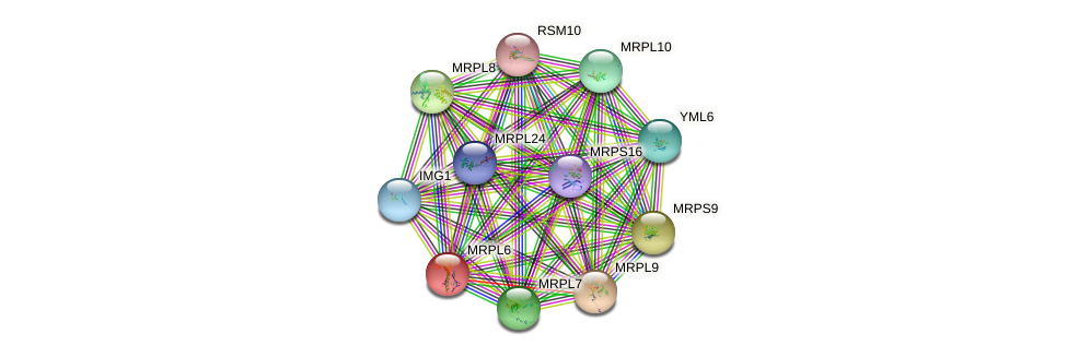 MRPL6 protein (Saccharomyces cerevisiae) - STRING interaction network