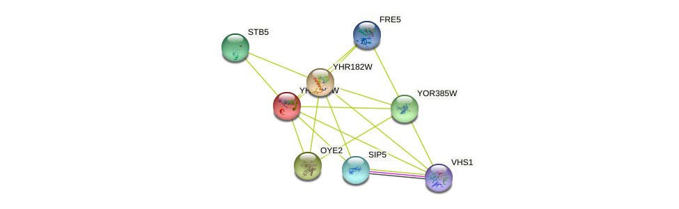 YHR180W protein (Saccharomyces cerevisiae) - STRING interaction network