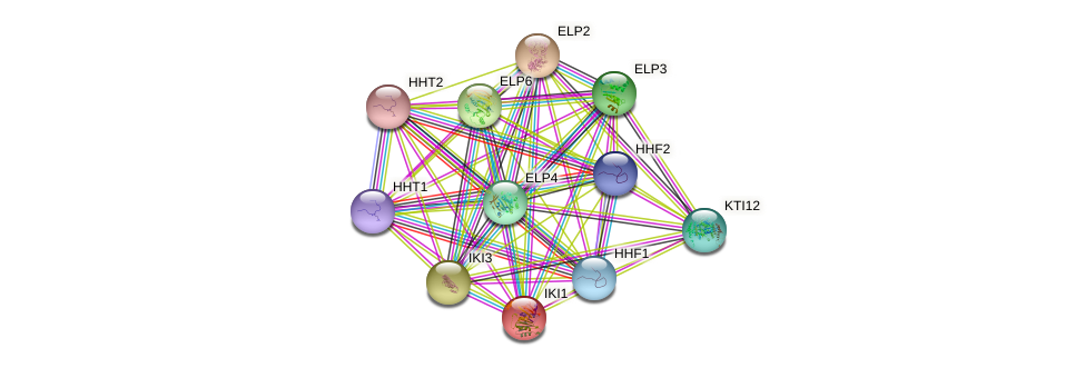 IKI1 protein (Saccharomyces cerevisiae) - STRING interaction network