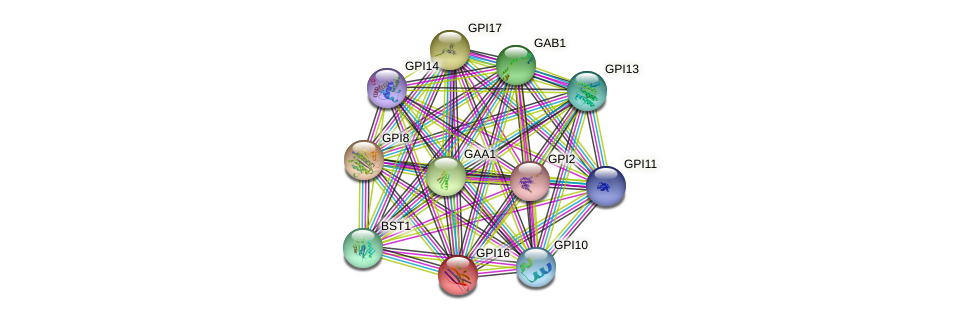 GPI16 protein (Saccharomyces cerevisiae) - STRING interaction network