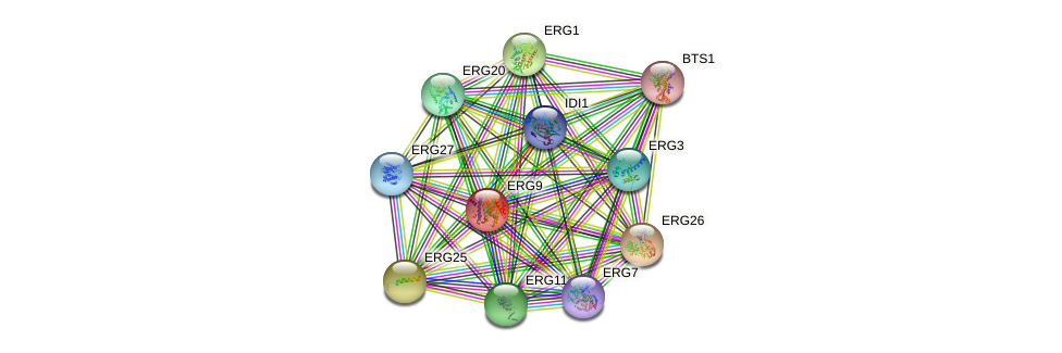 ERG9 protein (Saccharomyces cerevisiae) - STRING interaction network