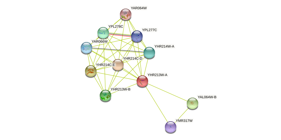 YHR213W-A protein (Saccharomyces cerevisiae) - STRING interaction network