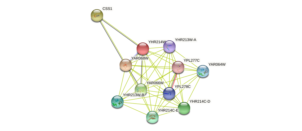 YHR214W-A protein (Saccharomyces cerevisiae) - STRING interaction network