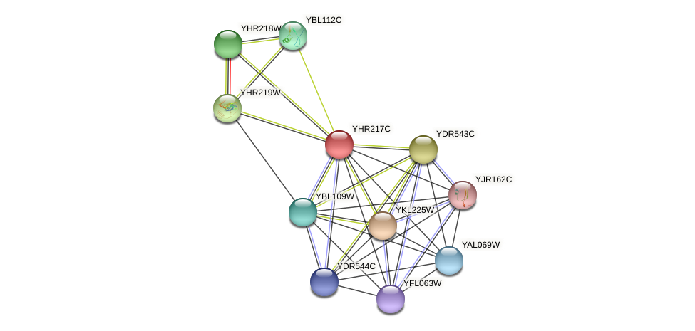 YHR217C protein (Saccharomyces cerevisiae) - STRING interaction network