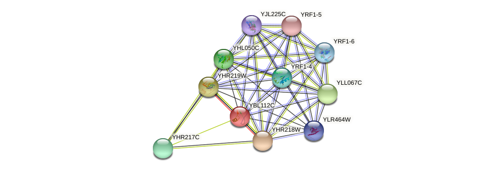YBL112C protein (Saccharomyces cerevisiae) - STRING interaction network