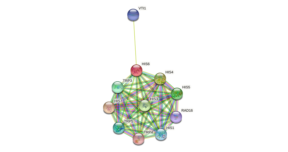 HIS6 protein (Saccharomyces cerevisiae) - STRING interaction network
