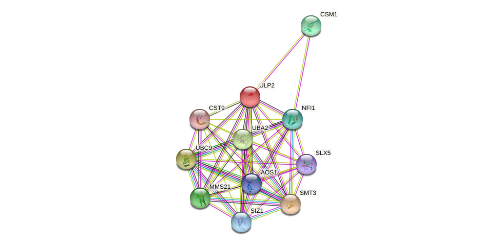 ULP2 protein (Saccharomyces cerevisiae) - STRING interaction network