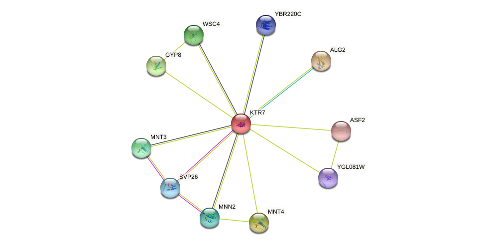 KTR7 protein (Saccharomyces cerevisiae) - STRING interaction network