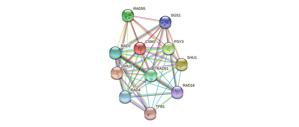 CSM2 protein (Saccharomyces cerevisiae) - STRING interaction network