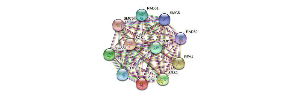 MPH1 protein (Saccharomyces cerevisiae) - STRING interaction network