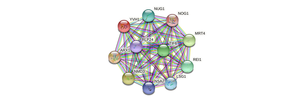 YVH1 protein (Saccharomyces cerevisiae) - STRING interaction network