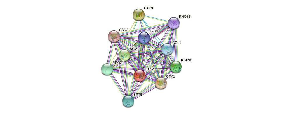CTK2 protein (Saccharomyces cerevisiae) - STRING interaction network