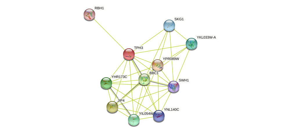YJL016W protein (Saccharomyces cerevisiae) - STRING interaction network