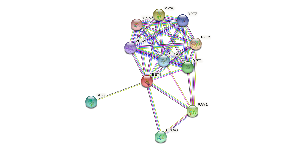 BET4 protein (Saccharomyces cerevisiae) - STRING interaction network