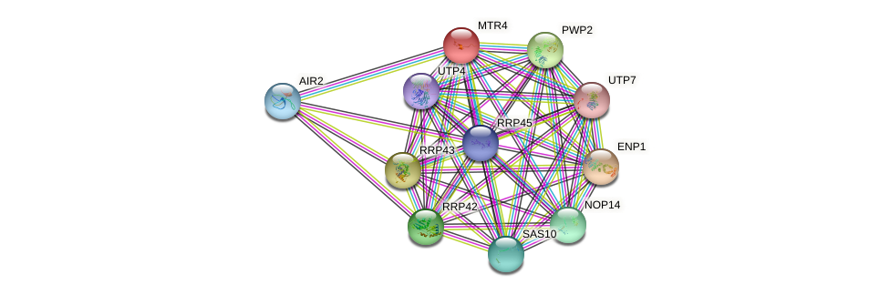 MTR4 protein (Saccharomyces cerevisiae) - STRING interaction network