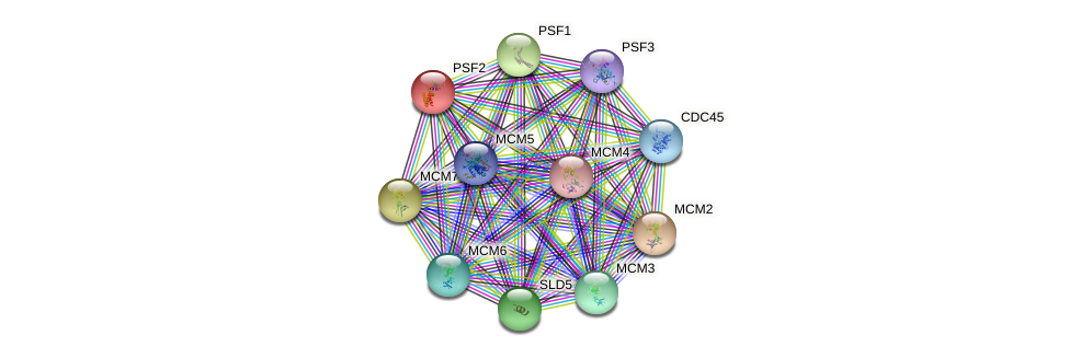 PSF2 protein (Saccharomyces cerevisiae) - STRING interaction network